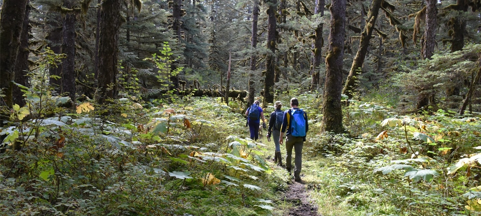 , Tongass National Forest, Phenomenal Place