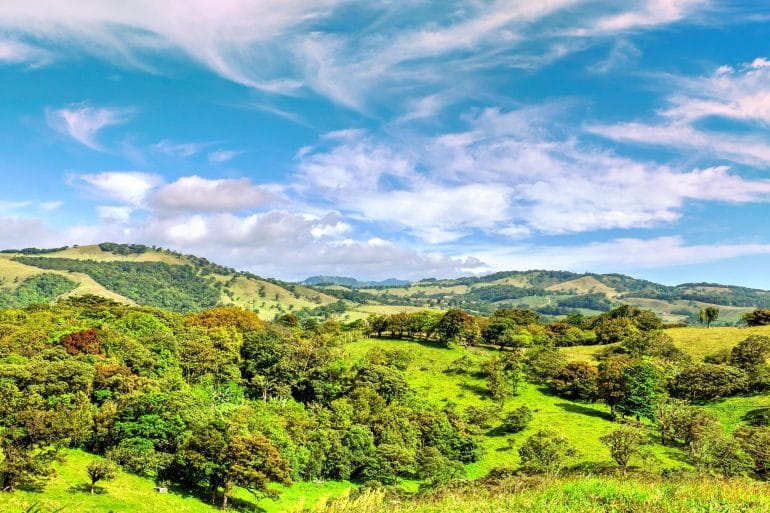 Monteverde Cloud Forest Reserve, Monteverde Cloud Forest Reserve: Must-Know Information and Guide (Updated 2021), Phenomenal Place