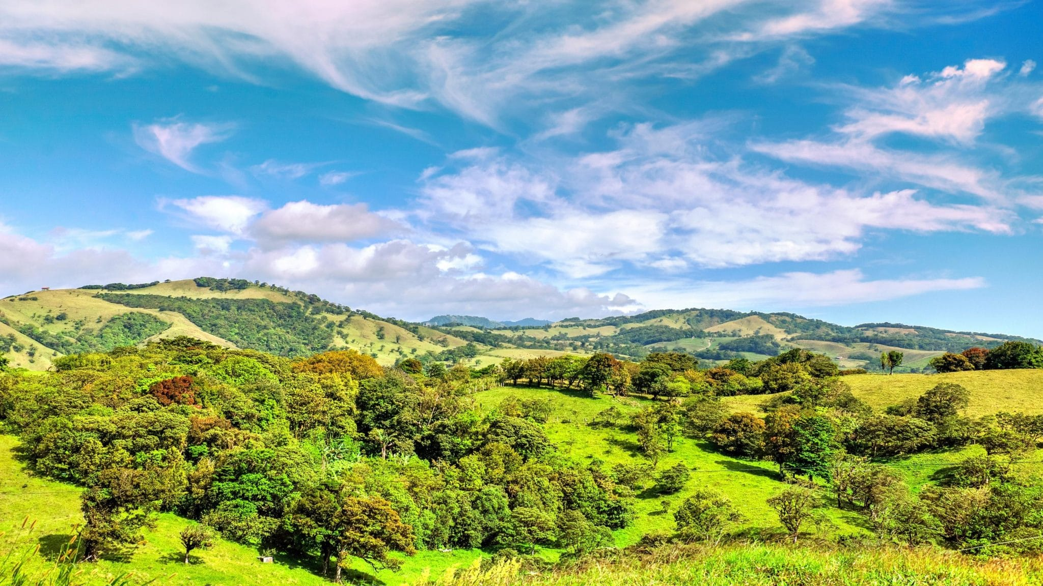 Monteverde Cloud Forest Reserve, Monteverde Cloud Forest Reserve: Must-Know Information and Guide, Phenomenal Place