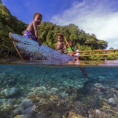 Papua New Guinea Jungles, Papua New Guinea Jungles: Must-Know Information and Guide (Updated 2021), Phenomenal Place