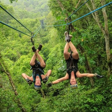 Puerto Vallarta Jungle, Puerto Vallarta Jungle: Must-Know Information and Guide, Phenomenal Place