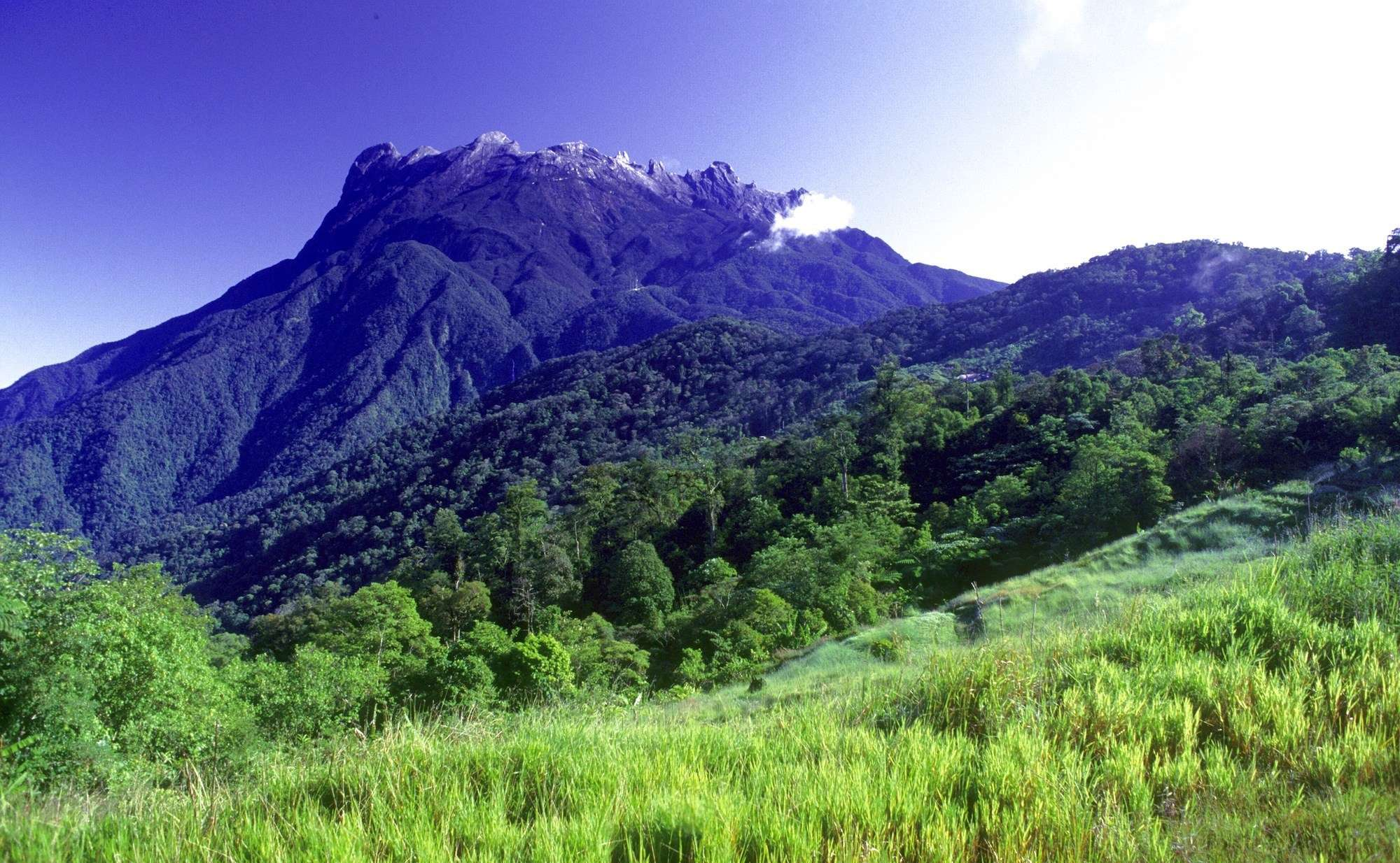 Kinabalu National Park, Kinabalu National Park: Must-Know Information and Guide, Phenomenal Place